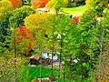 Fall Foliage - panoramio (9).jpg
