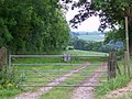 Farm gate near Ashmore - geograph.org.uk - 1347600.jpg
