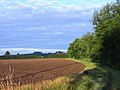 Farmland, Dorchester - geograph.org.uk - 1589608.jpg