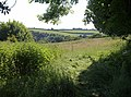 Field, Diptford - geograph.org.uk - 1376429.jpg