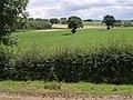 Fields beside the A303 - geograph.org.uk - 493305.jpg