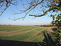 Fields to the N of Haynes Farm - geograph.org.uk - 633988.jpg