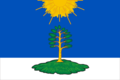 Flag of Solnechny (Tver oblast).png