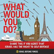 Flickr - Israel Defense Forces - Infographics, What Would You Do