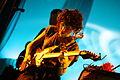 Flickr - moses namkung - St. Vincent 7.jpg