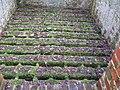 Floor of Ebernoe brick kiln - geograph.org.uk - 1162757.jpg