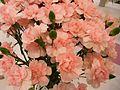 Flowers-4s.jpg