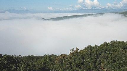 Fog in Algeria.jpg
