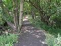 Footpath - Clough Lane, Paddock - geograph.org.uk - 921684.jpg