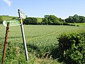 Footpath across The Laynes - geograph.org.uk - 856715.jpg