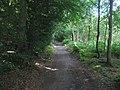 Footpath in Snipe Wood - geograph.org.uk - 1409135.jpg