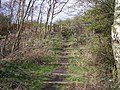 Footpath on Trackbed of ex Great Central Railway - geograph.org.uk - 747820.jpg