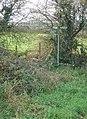 Footpath signpost - geograph.org.uk - 616577.jpg