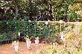 France Loir-et-Cher Festival jardins Chaumont-sur-Loire 2003 Nature aprivoisee 02.jpg