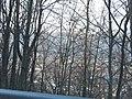 Frankstown Road view of Johnstown below - panoramio (23).jpg