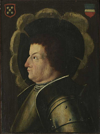 Martin Bucer - Franz von Sickingen was the protector and defender of Martin Bucer during his early years.