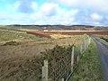 From Kinnabus Farm - geograph.org.uk - 350783.jpg