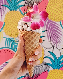 Frozen Fruit Ice Cream (44474096241).jpg