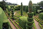 Funchal Botanical garden IMG 1806.JPG