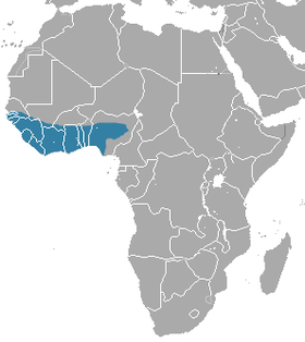 Gambian Mongoose area.png