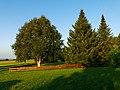 Garden - panoramio (4).jpg