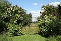 Garden Gates - geograph.org.uk - 1366190.jpg