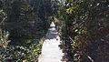 Garden Path (25478844794).jpg