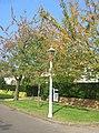 Gas Lamp - Barrow Road - geograph.org.uk - 1044110.jpg