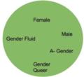 Gendercircle.png