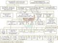 Genealogia famiglia Banchieri 2.png