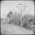 Gila River Relocation Center, Rivers, Arizona. A sign at the flower nursery, where much experimenta . . . - NARA - 537076.tif