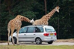 Euro Car Parks Pancras Road London Eng Gb Nc Qp