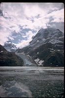 Glacier Bay National Park and Preserve GLBA3826.jpg