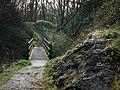 Glen Maye - geograph.org.uk - 773069.jpg
