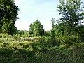 Glockenberg Sumpf sl3.jpg