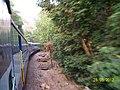 Goa Express on way to Belgaum near Doodh Sagar - panoramio.jpg