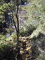 Going to the Vale Encantado^ - panoramio (3).jpg