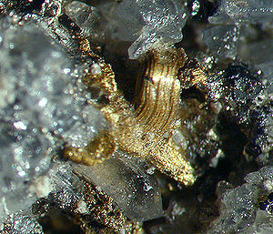 Gold Hill, Colorado - Image: Gold Sylvanite 282521