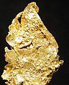 Gold-rl-1342a.jpg