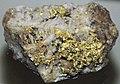 Gold on quartz (North Star Mine, Grass Valley Mining District, California, USA) (17161279802).jpg