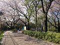 Goten-yama Hill, Kita Shinagawa 5Chome.jpg