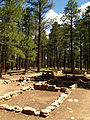 Grand Canyon Walhalla plateau. 14.jpg