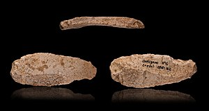 Prehistory of Transylvania - Aurignacian double edged scraper on blade - 3 views of the same object.