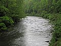 Greenbrier River (downstream from Durbin, West Virginia, USA) 1 (27503522300).jpg