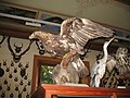 Gressoney-Saint-Jean-Museo-IMG 1838.JPG
