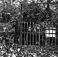 Großer Tiergarten in Berlin, Bild 9.jpg