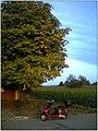 Gundelfingen - October 2013 - Master Black Forest Photography - panoramio (4).jpg
