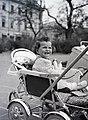 Gyerek, 1946 Budapest.Fortepan 105157.jpg