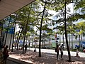 HK 中環碼頭 Central Piers 民光街 Man Kwong Street April 2020 SS2 05.jpg