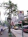 HK SPK 新蒲崗 San Po Kong 彩虹道 Choi Hung Road May 2019 SSG 26.jpg